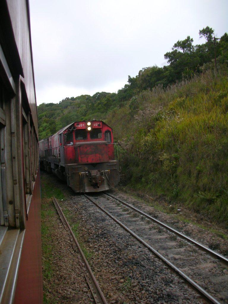 DSCN9181