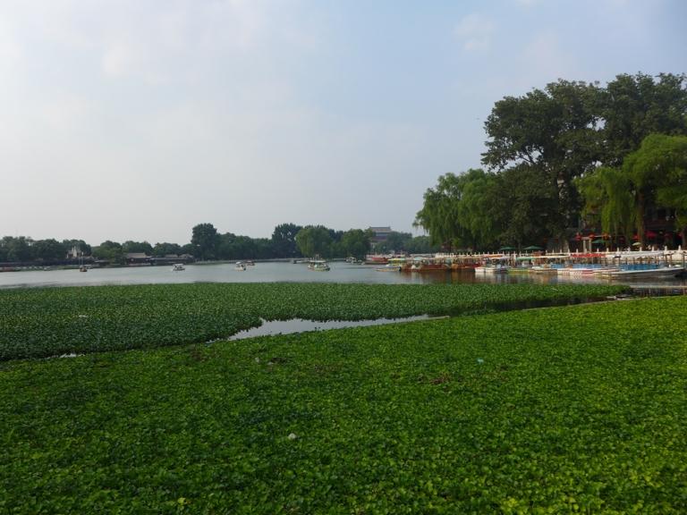Hutong_P1010095
