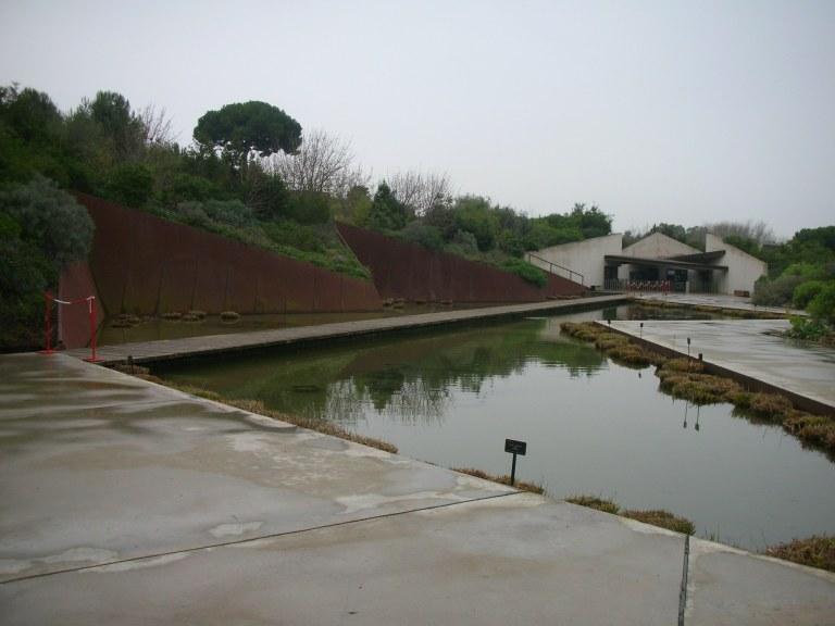 jardin botanico barcelona (9)